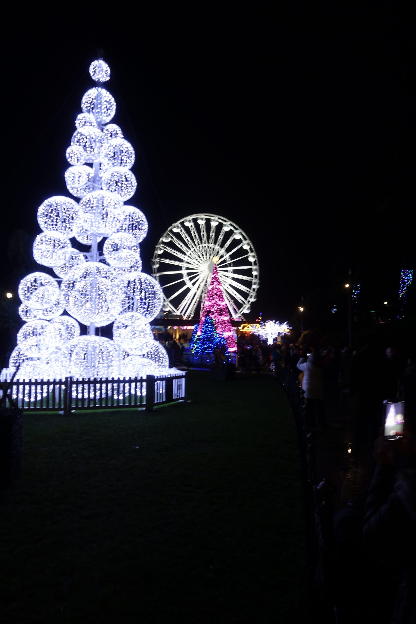 Bournemouth Christmas Tree Wonderland - photo by Juliamaud